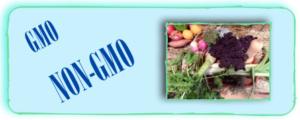 GMOS? Not GMOS?
